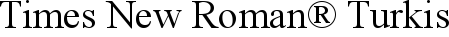 Font Times New Roman� Turkish Regular