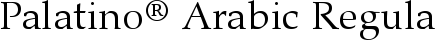 Font Palatino� Arabic Regular